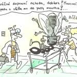KKH_DVOŘÁK (2)